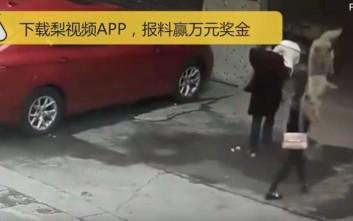 Ουρανοκατέβατος σκύλος τραυμάτισε σοβαρά περαστική στην Κίνα