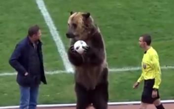 Η ρωσική ομοσπονδία ποδοσφαίρου φέρνει αρκούδα στο γήπεδο και γίνεται κακός χαμός