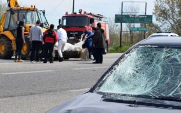 Σφοδρή σύγκρουση οχήματος με άλογο στην εθνική Ξάνθης-Κομοτηνής