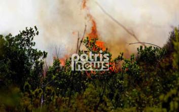 «Καμπανάκι» στην Ηλεία για τις φωτιές ενόψει καλοκαιριού