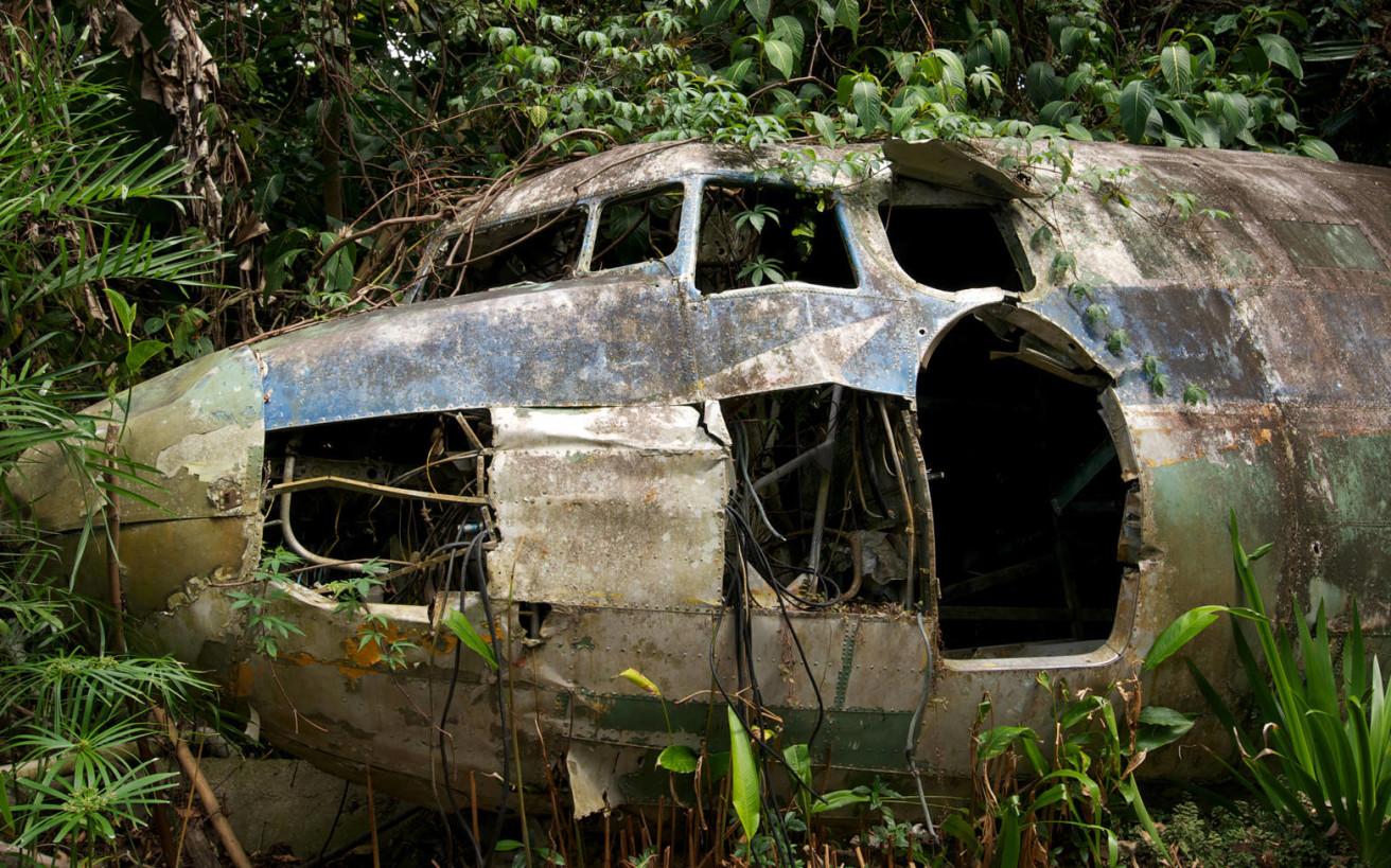 Επέζησε από πτώση αεροπλάνου και βγήκε ζωντανή απ' τη ζούγκλα χάρη σε μία συμβουλή του πατέρα της
