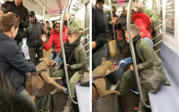 Η στιγμή που πίτμπουλ επιτίθεται σε γυναίκα στο μετρό της Νέας Υόρκης