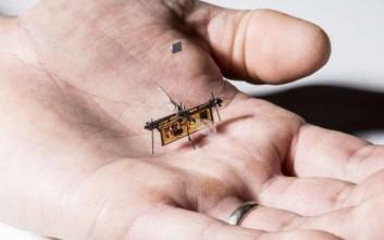 Ένα «έντομο» ανοίγει τον δρόμο για τα microdrones