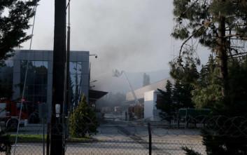 Διήμερο λουκέτο στα σχολεία της Ξάνθης μετά την πυρκαγιά στο εργοστάσιο