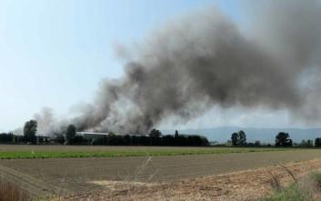 Διαβεβαιώσεις για την κατάσταση στην Ξάνθη μετά τη φωτιά