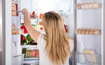 Ο εξολοθρευτής των οσμών στο ψυγείο σας