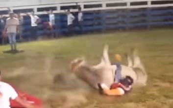 Ταύρος καταπλάκωσε, συνέθλιψε και σκότωσε αναβάτη