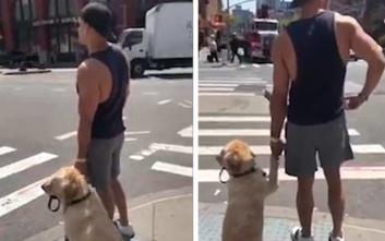 Σκύλος και ιδιοκτήτης κρατιούνται χέρι-χέρι για να περάσουν μαζί τον δρόμο