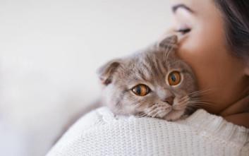 Οι σωστοί τρόποι για να κρατάς μια γάτα