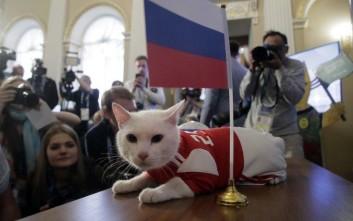 Ο Αχιλλέας ο γάτος προβλέπει νίκη της Ρωσίας στον πρώτο αγώνα του Παγκοσμίου Κυπέλλου