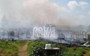Οι καταστροφές στον καταυλισμό εργατών από το Μπαγκλαντές στη Μανωλάδα