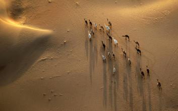 Συσκευή παραγωγής νερού από τον… αέρα της ερήμου
