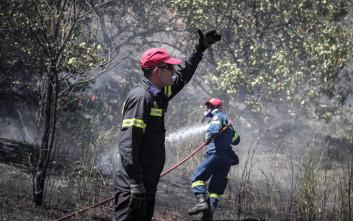Φωτογραφίες από τη φωτιά στο άλσος Συγγρού