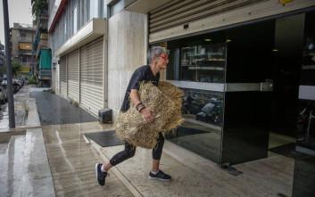 Ακτιβιστές πέταξαν... σανό στα γραφεία των Ανεξάρτητων Ελλήνων