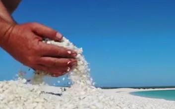 Μια κατάλευκη παραλία από κοχύλια στην Αυστραλία
