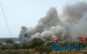 Πυρκαγιά ξέσπασε σε δασική έκταση στην Πύλο