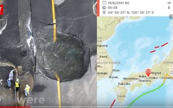 Περισσότεροι από 200 τραυματίες και τρεις νεκροί στο σεισμό στην Οσάκα