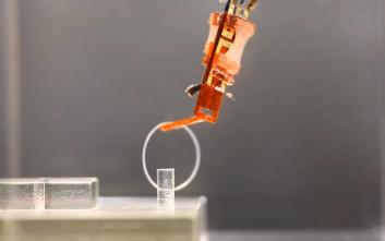 Τρομάξτε… άφοβα, έφτιαξαν ρομποτικό χέρι με ζωντανούς μυς!