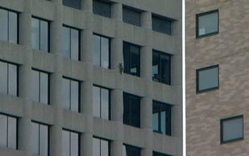 Ρακούν σκαρφαλώνει σε ουρανοξύστη και το Τwitter παρακολουθεί με κομμένη την ανάσα