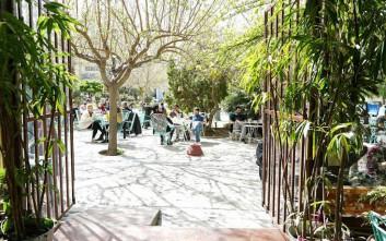 Έξι ωραία στέκια σε αθηναϊκές πλατείες για να... αράξεις τις Κυριακές