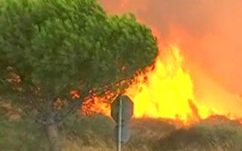 «Είδα με τα μάτια μου 200 οχήματα και πάνω από 100 σπίτια να καίγονται»