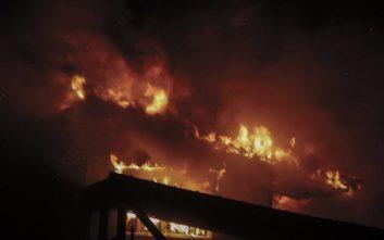 «Σε μια φωτιά ύψους 30 μέτρων πανικοβάλλεται κανείς όσο ψύχραιμος κι αν είναι»