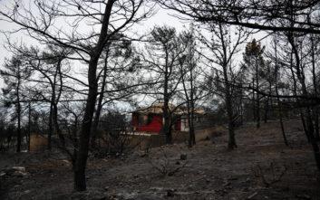 Δούρου: Αύξηση πιστώσεων για αντιπλημμυρικά έργα στις πυρόπληκτες περιοχές