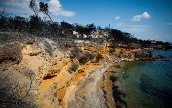 Τσούπρα: Ουδέποτε λάβαμε εισήγηση ή εντολή για οργανωμένη προληπτική απομάκρυνση πολιτών