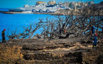 Πυρκαγιά Μάτι: Νέα στοιχεία που ενισχύουν το αίτημα για αναβάθμιση της κατηγορίας