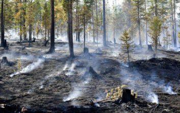 Η Ευρώπη στα «κάρβουνα» με ρεκόρ θερμοκρασιών και πυρκαγιές