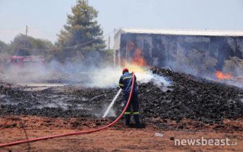 «Ευτυχώς δεν πήγε η φωτιά σε αποθήκη με εύφλεκτα υλικά»