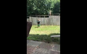 Δίχρονος και σκύλος παίζουν με μια μπάλα πάνω από έναν φράχτη