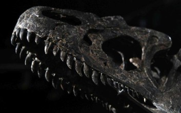 Ο γιγαντιαίος δεινόσαυρος που έζησε πριν από 200 εκατομμύρια χρόνια