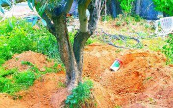Βρήκαν στην αυλή της στο Μαρούσι ένα κιλό κοκαΐνη