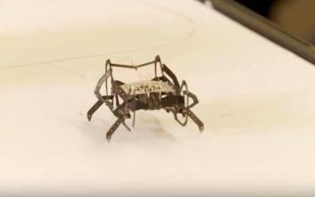 Γιατί η Rolls Royce εξελίσσει ρομπότ στο μέγεθος κατσαρίδας