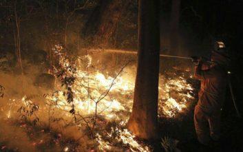 Τραγωδία με πιλότο πυροσβεστικού στη νοτιοανατολική Αυστραλία