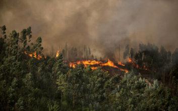 Πορτογαλία: Πάνω από 900 πυροσβέστες στη μάχη κατά των πυρκαγιών