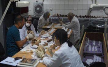 Τους σκελετούς δυο ανδρών και μιας γυναίκας «έκρυβε» η σαρκοφάγος στην Αλεξάνδρεια