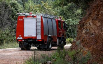 Πώς η πυρκαγιά στη Ζαχάρω «έσωσε» 86χρονο αγνοούμενο
