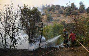 Υπό έλεγχο οι δύο φωτιές σε περιοχές της Θεσσαλονίκης