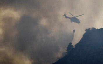 Σε ύφεση η πυρκαγιά στην Δαφνιώτισσα Ηλείας