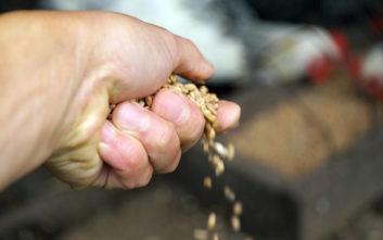 Στροφή στα αγροτικά επαγγέλματα