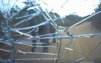 Η δραματική στιγμή που ελέφαντας επιτίθεται σε αυτοκίνητο