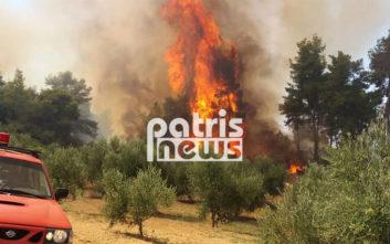 Απομακρύνεται η φωτιά από τον οικισμό στην Αμαλιάδα