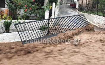 Νέες εικόνες καταστροφής από την νεροποντή σε χωριό της Λαμίας