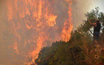 Σύμμαχοι των πυρκαγιών στη Ζάκυνθο οι ισχυροί άνεμοι