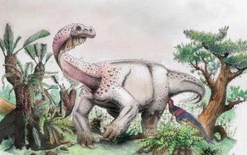 Ανακαλύφθηκε ένας νέος τεράστιος δεινόσαυρος στη Νότια Αφρική
