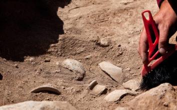 «Καμπανάκι» για μία από τις σημαντικότερες αρχαιολογικές τοποθεσίες στην Αθήνα