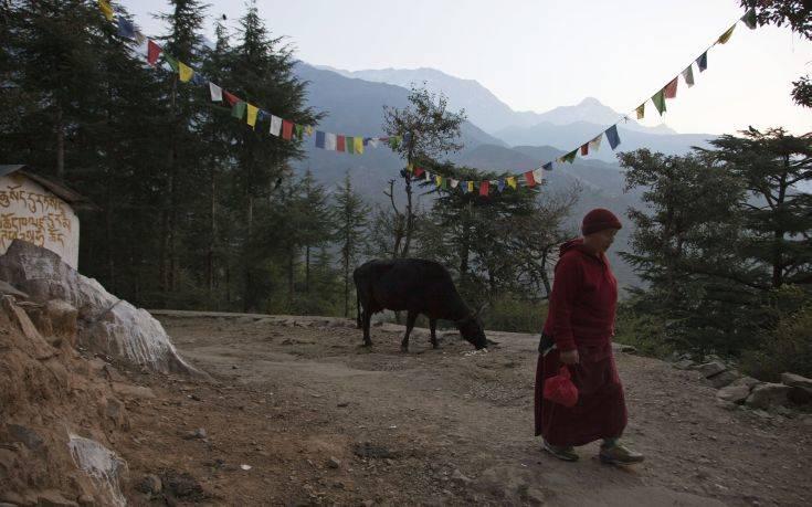 Στο κεντρικό Θιβέτ πριν από περίπου 40 εκατ. χρόνια υπήρχε τροπικό δάσος βροχής