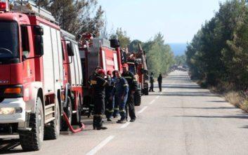 Χωρίς ενεργό μέτωπο η φωτιά στη Σιθωνία Χαλκιδικής